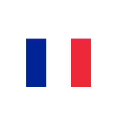 Drapeau Français pour GV Nacra 15 - Proust Sailing